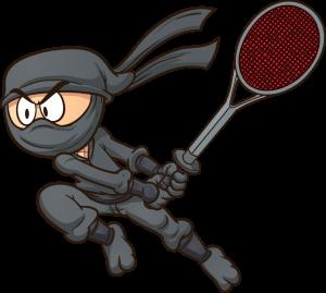 The Mosquito Ninja
